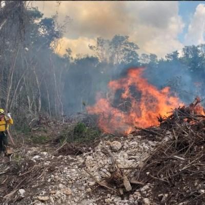 Por calor incrementan los incendios forestales en Colima