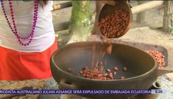La ruta del cacao en Tabasco y sus orígenes ancestrales