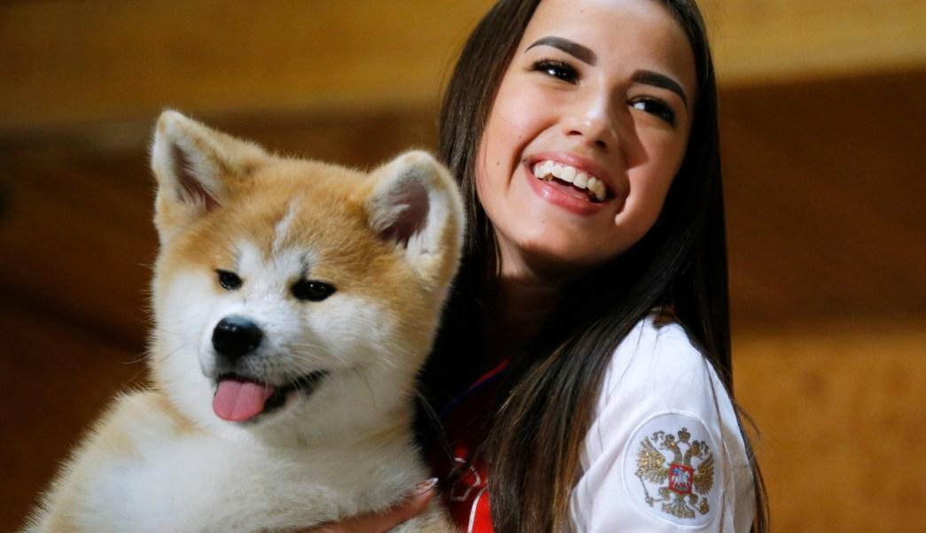 perro-feliz-como-saber-veterinario-mascotas