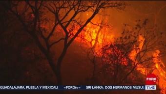 Reportan 13 incendios forestales activos en Chiapas