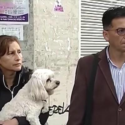 Ladrones devuelven perritos que venían en el coche que se robaron