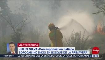 Sofocan incendios forestales en bosque La Primavera y barranca Huentitán