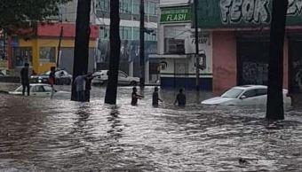 Tormenta con granizo deja árboles caídos y vehículos varados en Xalapa, Veracruz