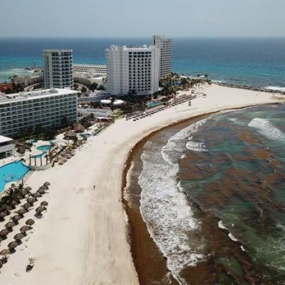 Siguen llegando toneladas de sargazo a costas de Quintana Roo