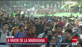 Foto: Legalización Marihuana DRrogas Chile 20 de Mayo 2019