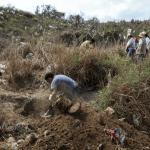 Foto: Búsqueda de personas desaparecidas en México, 11 de marzo de 2019, Veracruz