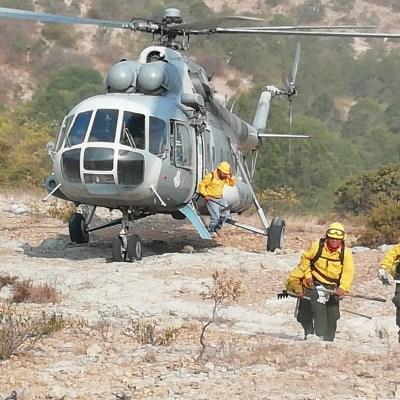 Dos incendios continúan activos en SLP, uno de ellos en la sierra de San Miguelito