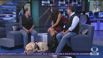 ¿Cuáles son los beneficios de las terapias de los 'Dog Tores'?