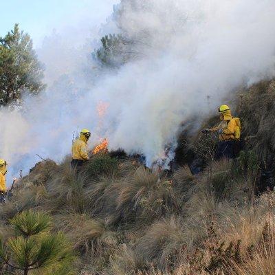 Faltan tres semanas de alto riesgo de incendios forestales en México: Conafor