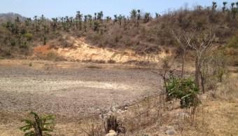 Foto: Según Conagua, en 5 meses solo han llovido 3 milímetros en Colima