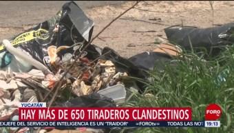 FOTO: Hay más de 650 tiraderos clandestinos en Yucatán, 12 MAYO 2019