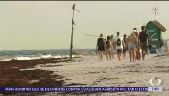 Hoteleros de Cancún lamentan desinterés del Gobierno federal para combatir sargazo