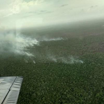 Suman tres incendios forestales activos en Quintana Roo