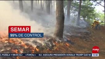 FOTO: Incendios afectan la selva de los Chimalapas en Oaxaca, 11 MAYO 2019