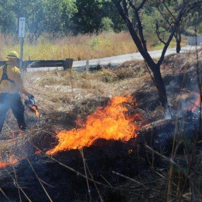 Video: Así se ven los incendios forestales en México desde el espacio