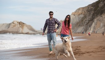 Mexicanos prefieren viajar y criar perros a ser padres