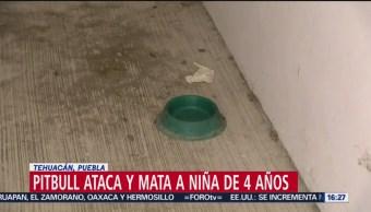 FOTO: Muere niña de 4 años tras ataque de pitbull en Tehuacán, Puebla