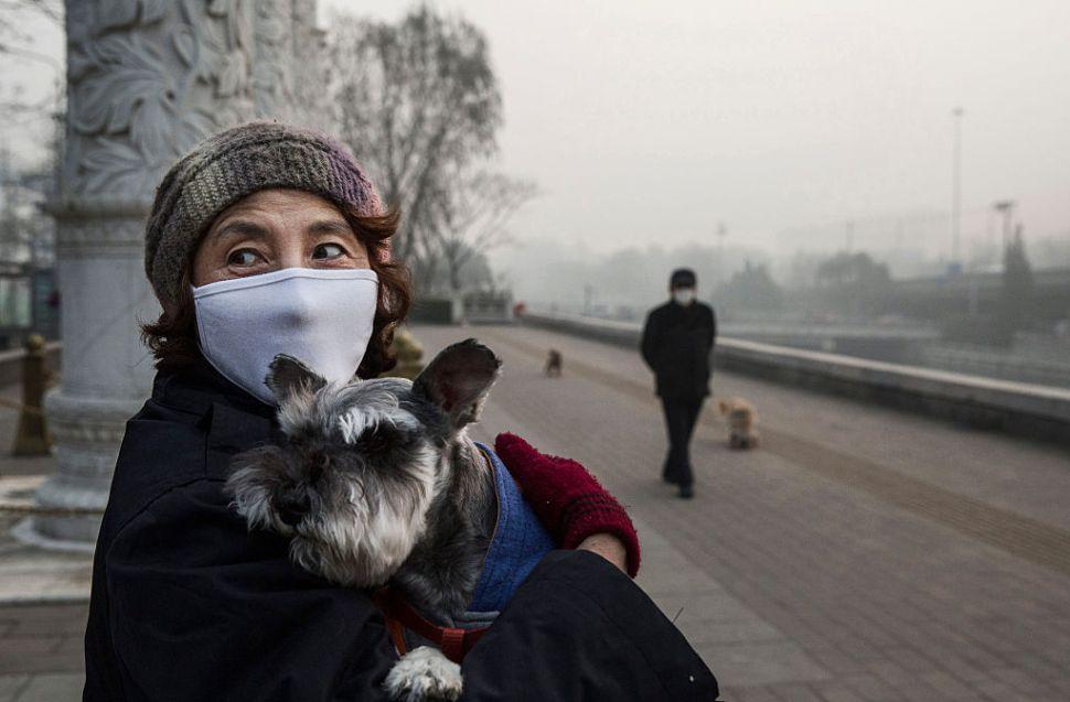 Mujer china usa una máscara mientras carga a su perro en un día de contingencia ambiental en Beijing, China. (GettyImages)