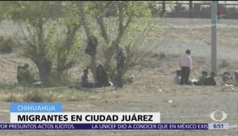 Patrulla Fronteriza arrestó a cientos de migrantes en frontera con