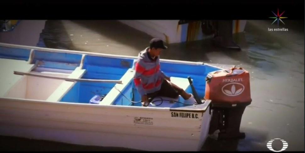 Foto Pescadores de California piden solucionar tráfico de totoaba y extinción de vaquita marina 31 mayo 2019