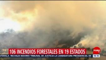 Foto: Incendios Forestales País México 16 de Mayo 2019