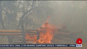 FOTO: Reportaron olor a quemado en la Ciudad de México, 12 MAYO 2019