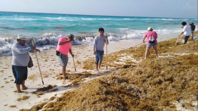 Foto: combate de sargazo en playas de Quintana Roo. 19 de mayo 2019. Twitter @AytoCancun