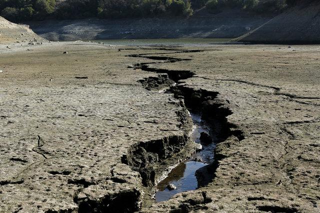 Un arroyo fluye al fondo de la Reserva Almaden cerca de San José, California (Reuters/Archivo)