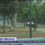 Zona de corredores en Chapultepec luce desierta durante contingencia