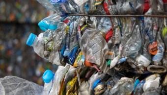 Foto: México, uno de los países que más recupera plástico PET en el mundo y supera a EU, Canadá y Brasil, según la Asociación Civil Ecoce, junio 8 de 2019 (Getty Images)