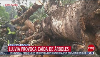 FOTO: Daños, caos vial y encharcamientos tras lluvia en CDMX