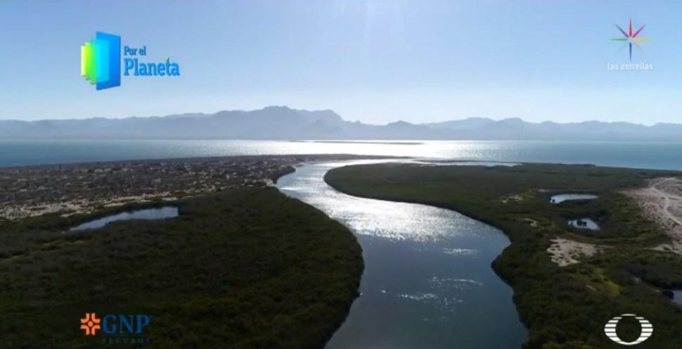 Foto: Isla Tiburón, último territorio sagrado de seris en Sonora 27 junio 2019