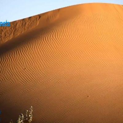 Las dunas de Altar, el canto del gran desierto de Sonora