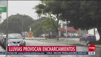 FOTO: Onda tropical número 3 deja lluvias en Yucatán, 16 Junio 2019