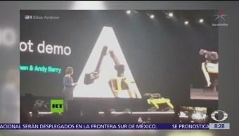 Perro robot se desmaya durante exhibición