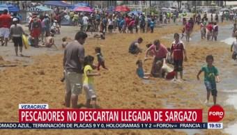 Foto: Pescadores Veracruz Sargazo 28 Junio 2019