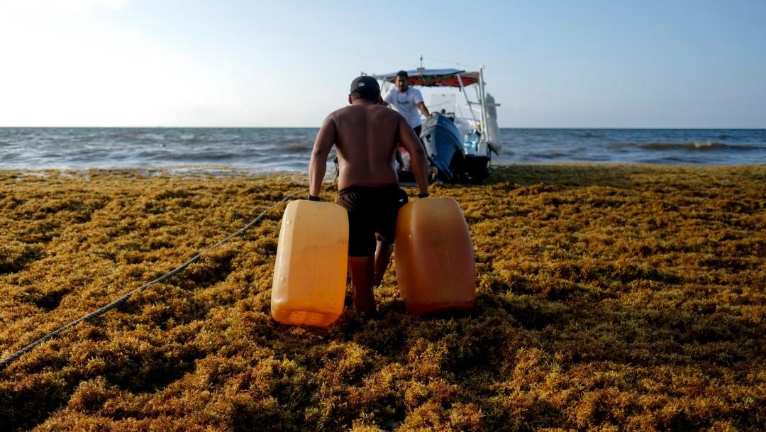 Foto: Hombre camina entre sargazo en Playa del Carmen. Quintana Roo, 8 de mayo de 2019, México