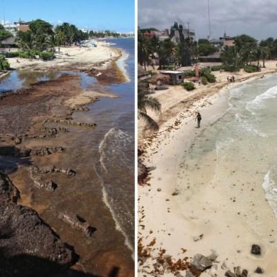 Barreras retienen toneladas de sargazo en Quintana Roo