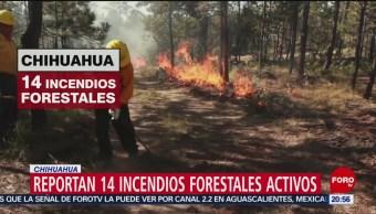 Foto: Van Más 500 Incendios Forestales Registrados Chihuahua 26 Junio 2019