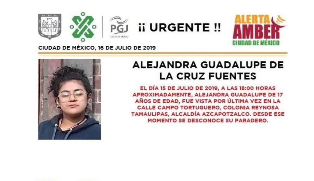 Foto Alerta Amber para Alejandra Guadalupe De la Cruz Fuentes 16 julio 2019