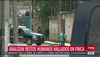 FOTO: Analizan restos humanos hallados en una finca en Jalisco, 20 Julio 2019
