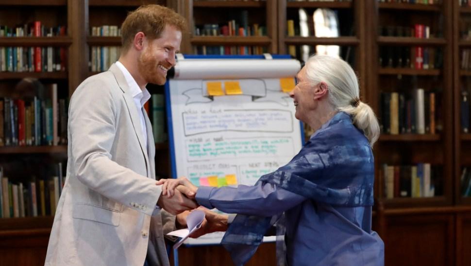 El príncipe Enrique y Jane Goodall. (AP)