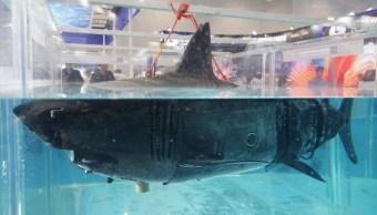 Foto China presenta drones submarinos espía con diseño de tiburón 30 julio 2019