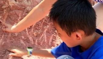 Huevos-dinosaurio-Nino-descubre-Fosiles-China