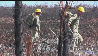 Combaten incendio en la Biosfera de Sian Ka'an