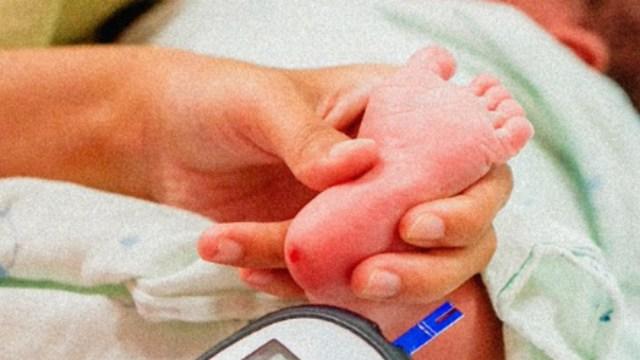 FOTO Desierta, licitación para pruebas de tamiz metabólico neonatal (@MXvsCORRUPCION)