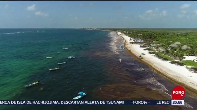 Foto: Disminuye Llegada Sargazo Costas Quintana Roo 29 Julio 2019