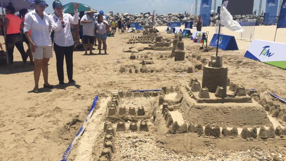 esculpe tu animal favorito con arena en la playa
