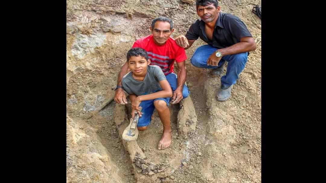 Niño descubre fósil de cocodrilo prehistórico que habitó hace ocho millones de años en la Amazonía de Brasil