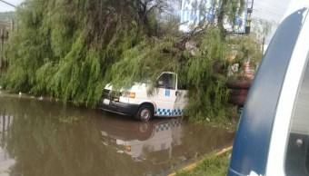 Foto: Un árbol cayó sobre una combi en el municipio de Ixtapaluca. El 4 de julio de 2019